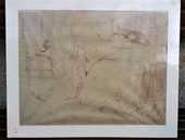 Lithographie Toulouse-Lautrec   Femme sur le dos 90 Cierrey (27)