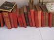 lot de livre anciens