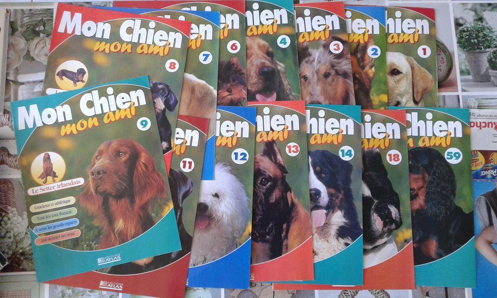 lot de livre de chiens de la collection  mon chien mon ami  30 Mantes-la-Ville (78)