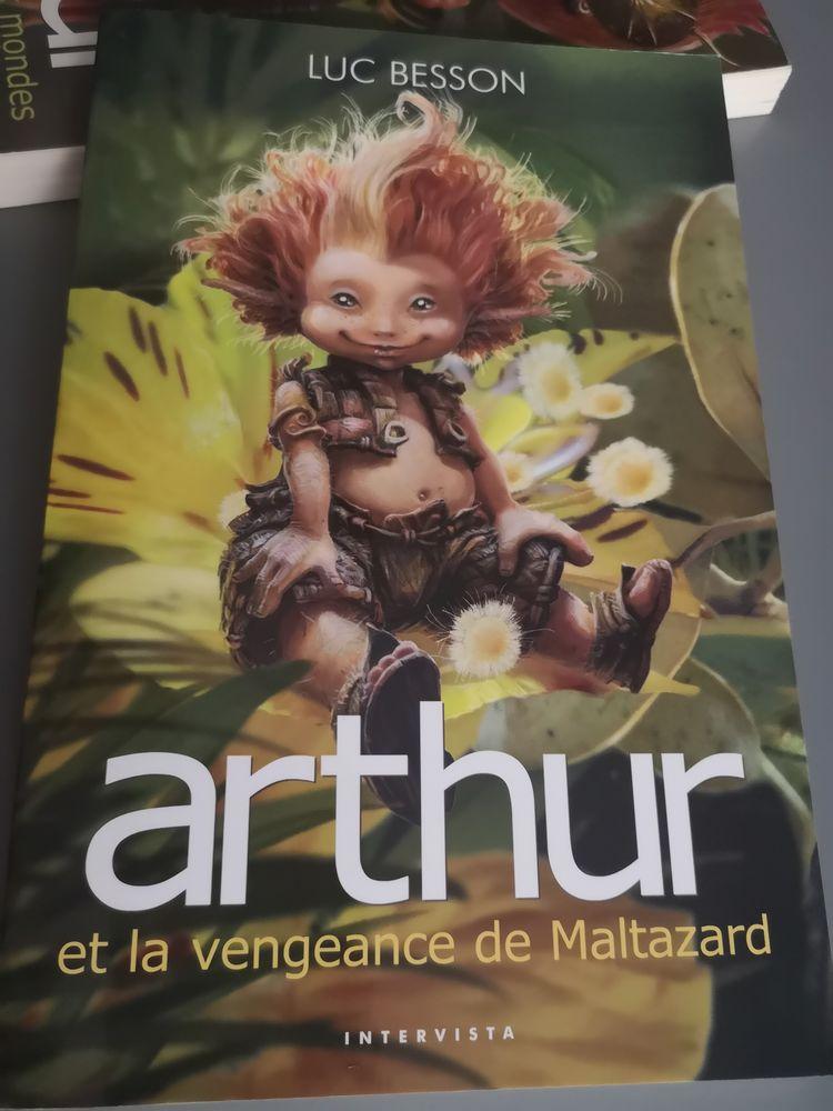 Livre enfants 5 Lagny-sur-Marne (77)