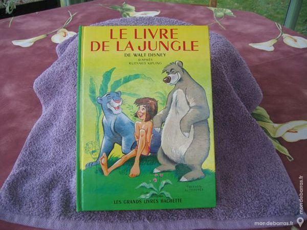 le livre de la jungle 9 Corbeil-Essonnes (91)