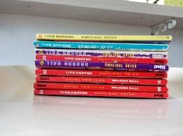 livre manga 10 Le Perray-en-Yvelines (78)