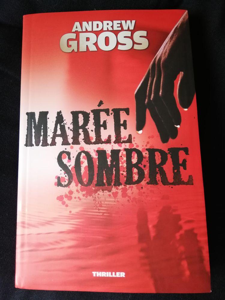 Livre :  Marée sombre  de Andrew Gross (thriller). 15 Asnières-sur-Seine (92)