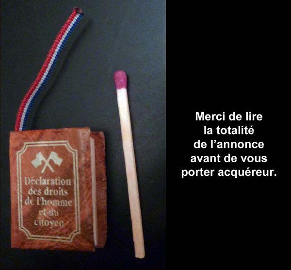 Livre miniature DÉCLARATION DROITS DE L'HOMME 10 Clamart (92)