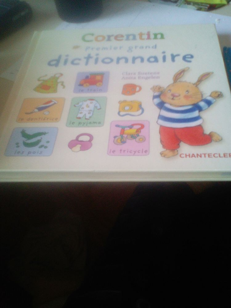 Livre pour enfant  15 Chartres (28)