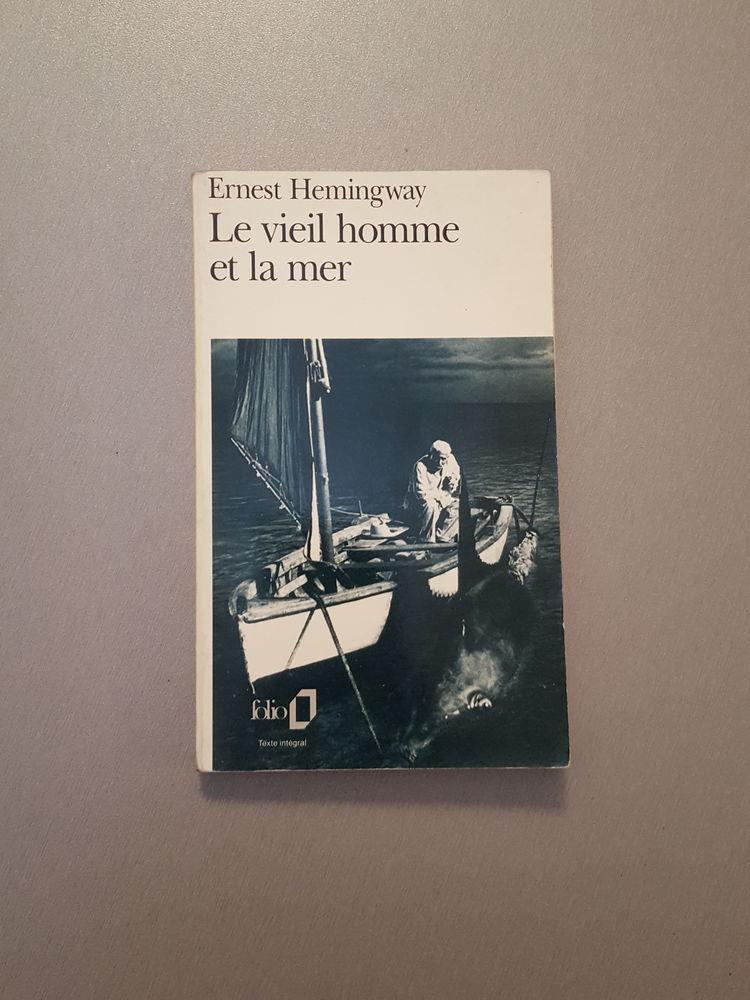 Le livre Le vieil et la mer d'Ernest Hemingway 3 Sochaux (25)