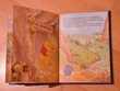 Livre Winnie l'ourson,le grand voyage. Disney. 96 pages. Livres et BD