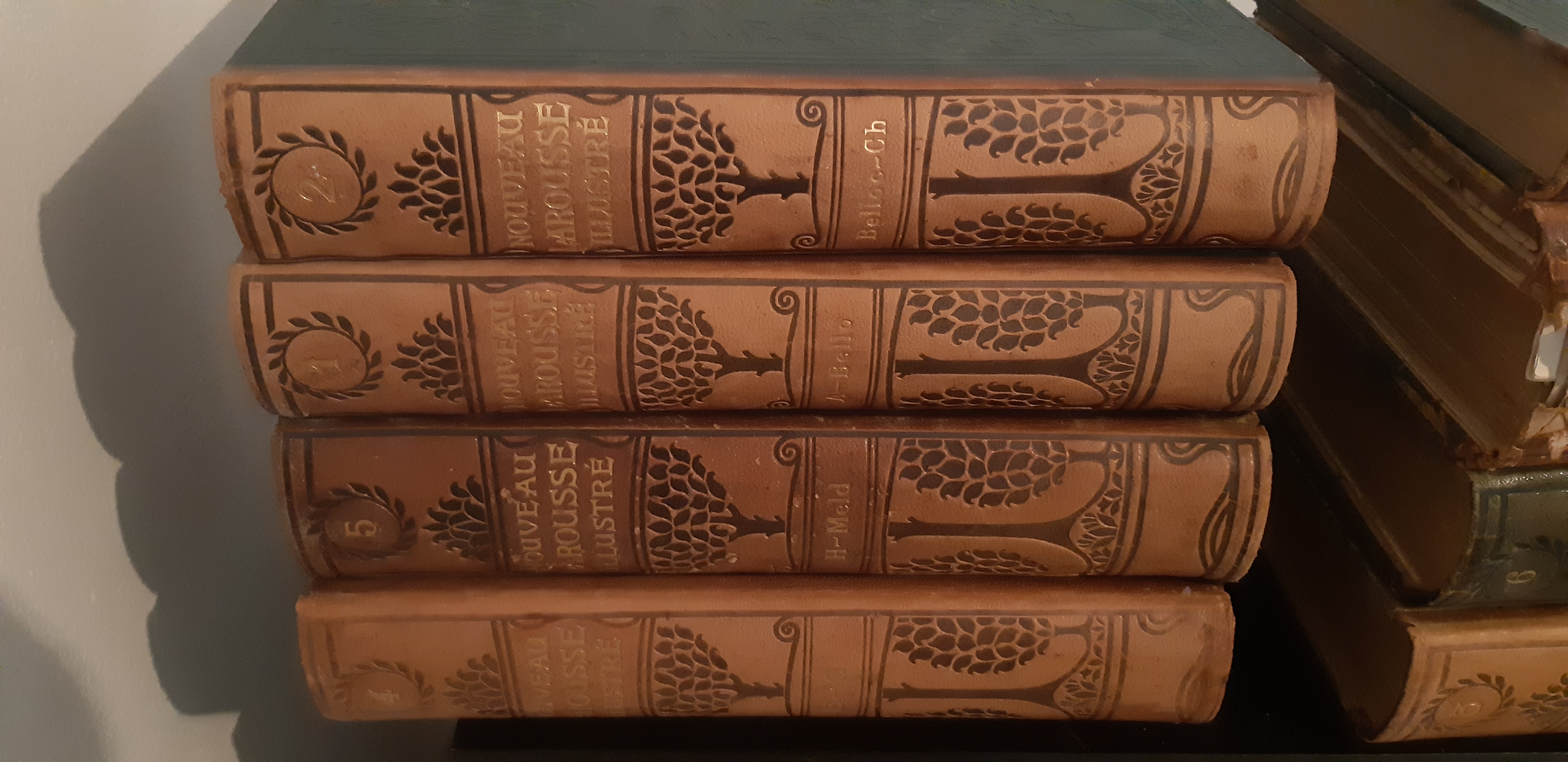 Livres anciens plusieurs lots 70 Saint-Paul-lès-Dax (40)