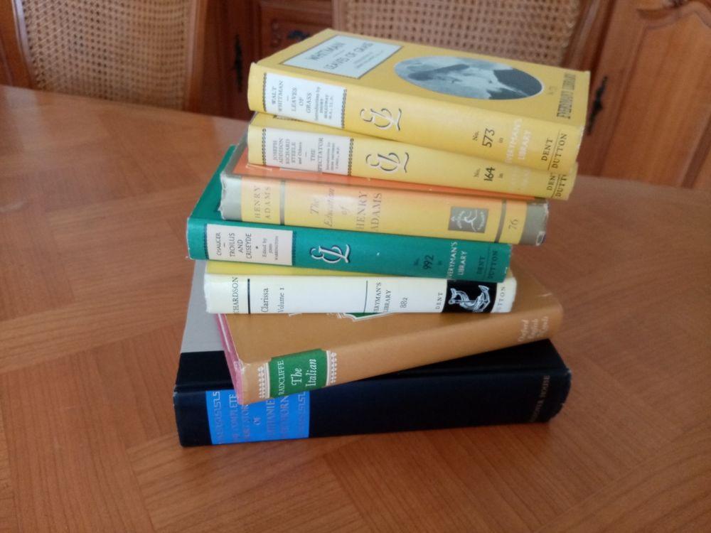 Livres en anglais et bilingues. 3 Digne-les-Bains (04)