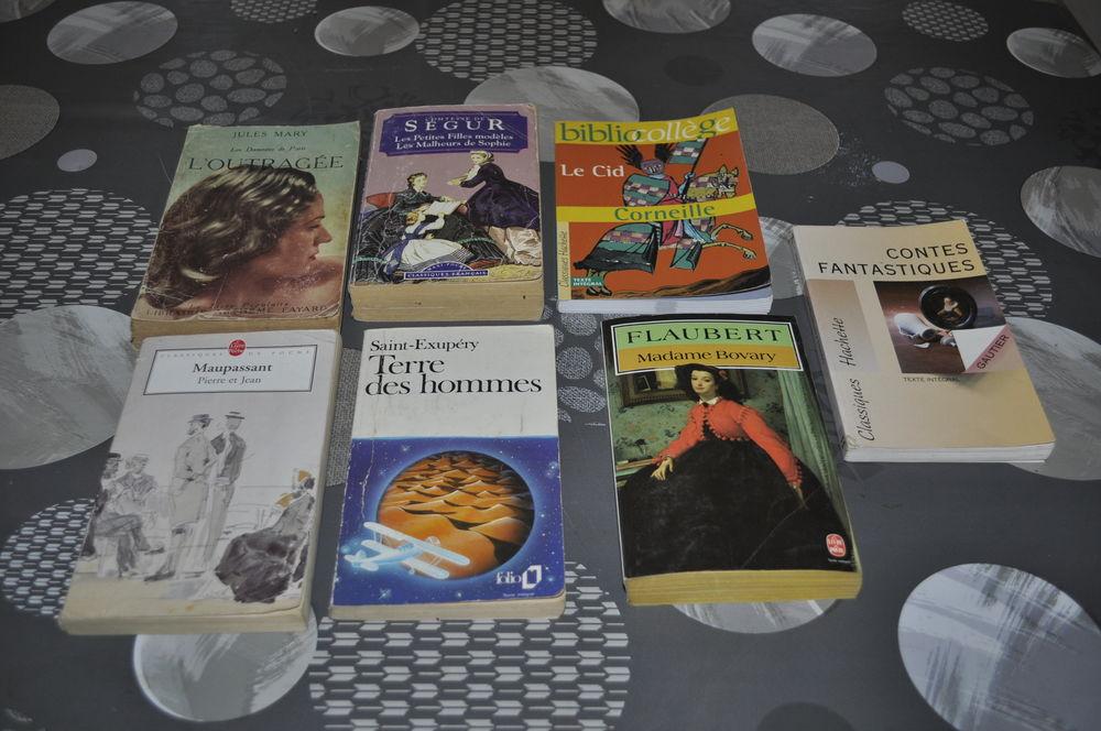 Lot de livres avec entre autre  Flaubert  5 Perreuil (71)