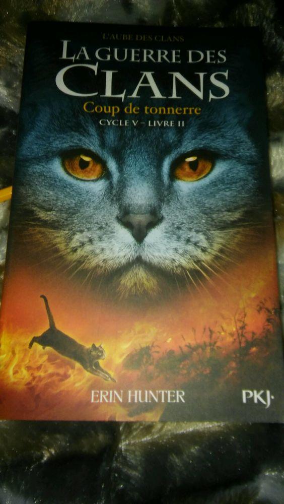 Livres ado, chats, la guerre des clans 110 Bram (11)