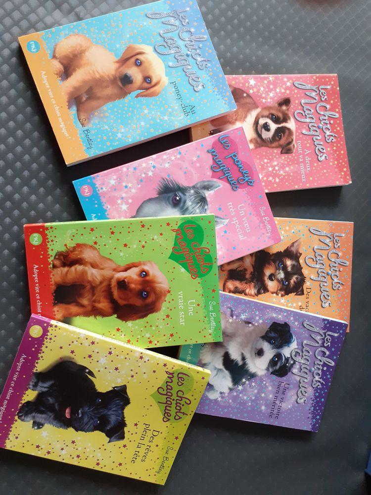 Livres les chiots magiques, chiens magiques et poney magique 1 La Bassée (59)