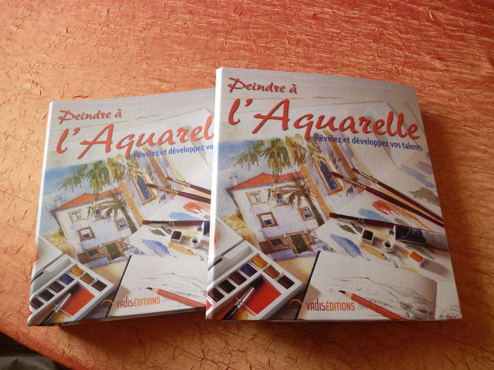 Livres - classeurs collection  Peindre à l'Aquarelle 50 Pulnoy (54)