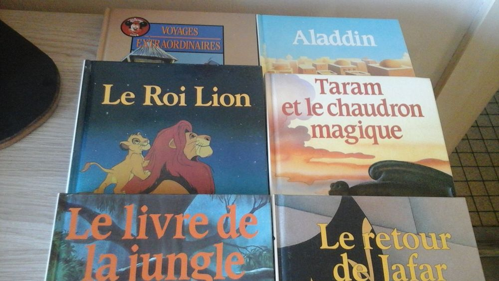 LIVRES DISNEY  30 La Rochelle (17)
