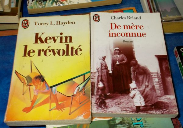 Lot de 2 livres sur l'enfance 10 Monflanquin (47)