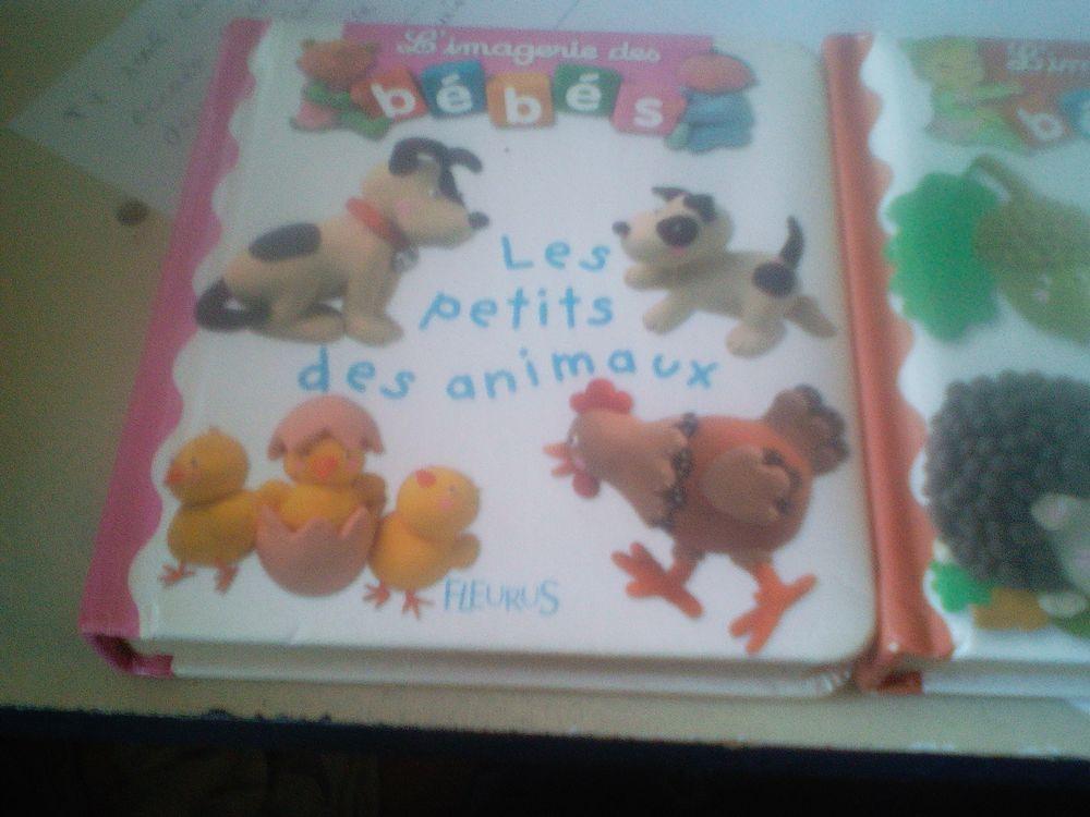 Livres d'enfant l'imagerie des Bébés 15 Chartres (28)