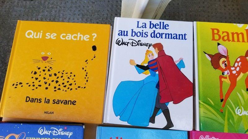 livres enfants Walt Disney et autres 5 Cazilhac (11)