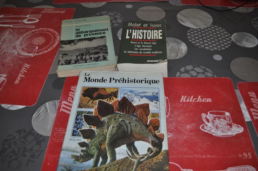 Lot de livres sur l'histoire 5 Perreuil (71)