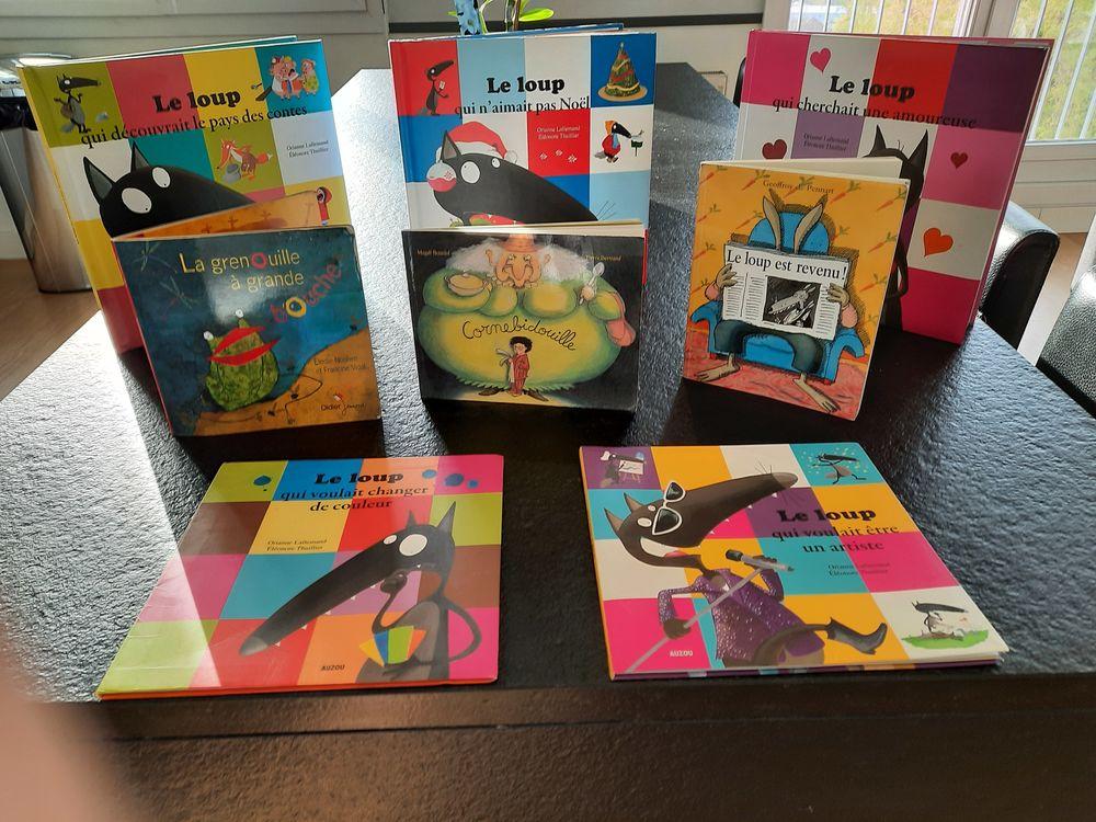 Livres jeunesse enfants 3-6 ans  2 Savigny-sur-Orge (91)