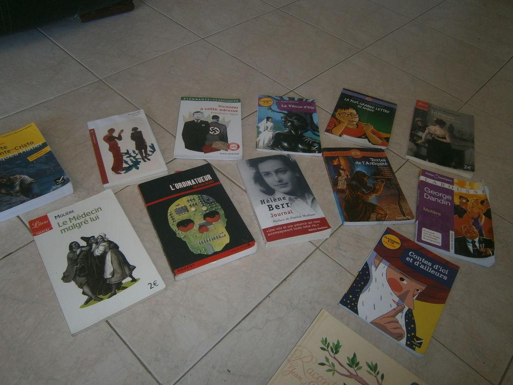 livres littéraire pour collège 3 Annonay (07)