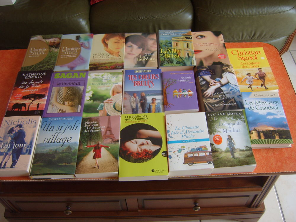 Lot de livres littérature contemporaine et romans 1 Romagnat (63)