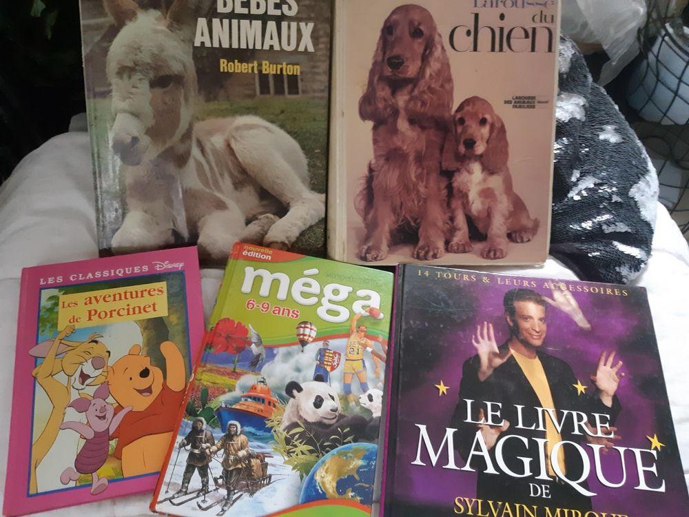 Livres de magie - animaux - enfant 10 Châtenay-Malabry (92)