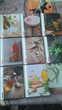 8 livres de poche LAROUSSE Livres et BD