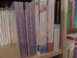 Livres de poche romans nouvelles lot n°3