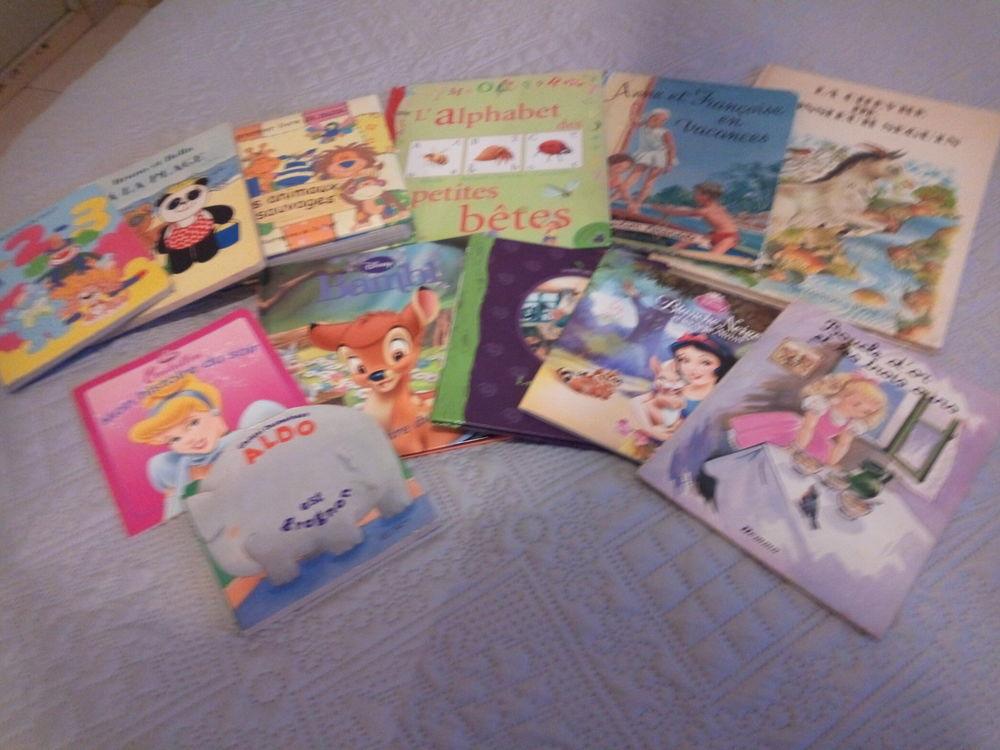 livres pour enfant 9 Lavernose-Lacasse (31)