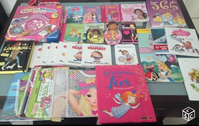 Lot de livres et puzzles pour fille 20 Saint-Gilles-Croix-de-Vie (85)