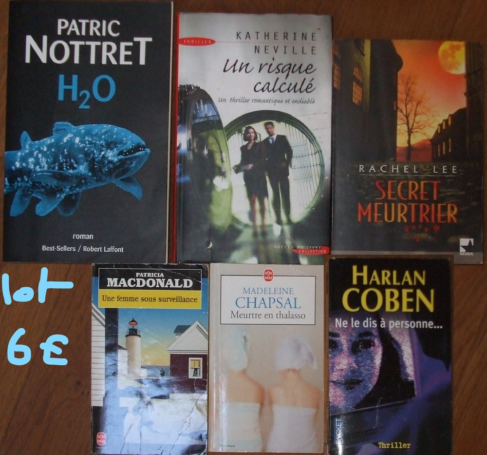 Livres thriller lot 6 Valréas (84)