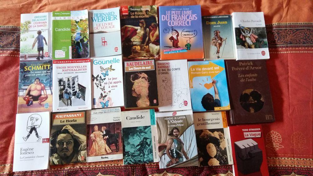 Livres en bon ou très bon état pour adultes, adolescents. 2 Valenciennes (59)