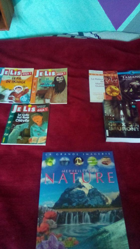 livres 2 Bully-les-Mines (62)