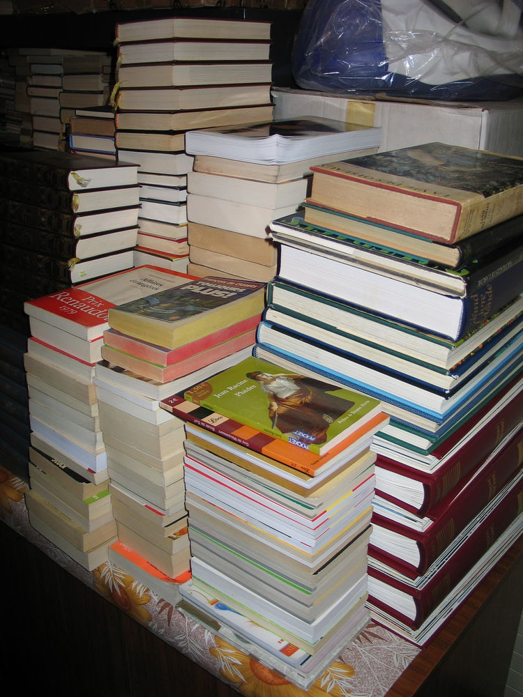 Lots de livres toutes catégories  1 Quincy-sous-Sénart (91)