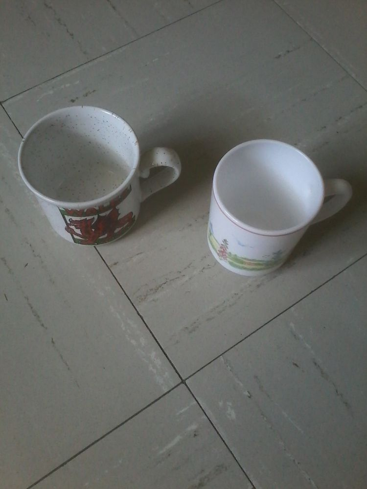 Lots  2 tasses  3 Tourcoing (59)