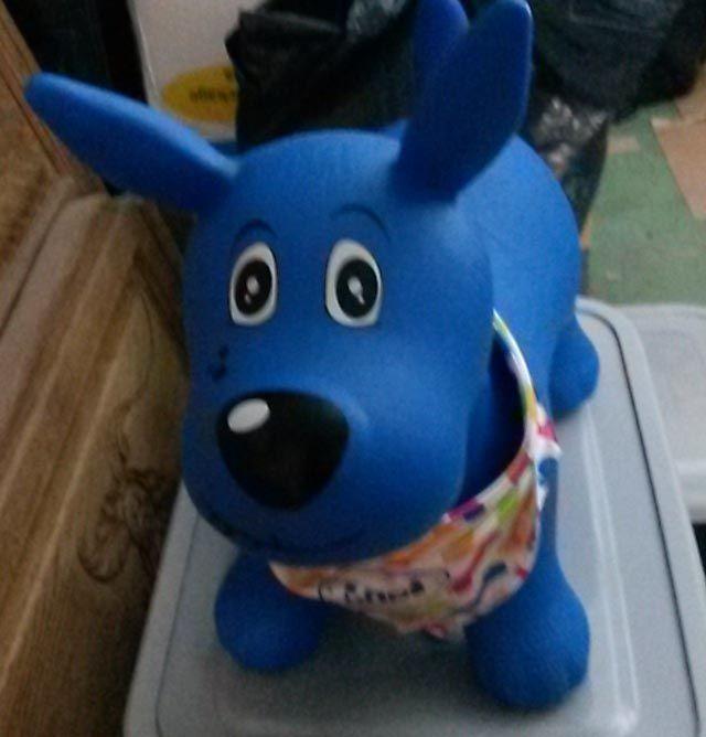 Ludi mon chien sauteur - bleu 15 Les Clayes-sous-Bois (78)