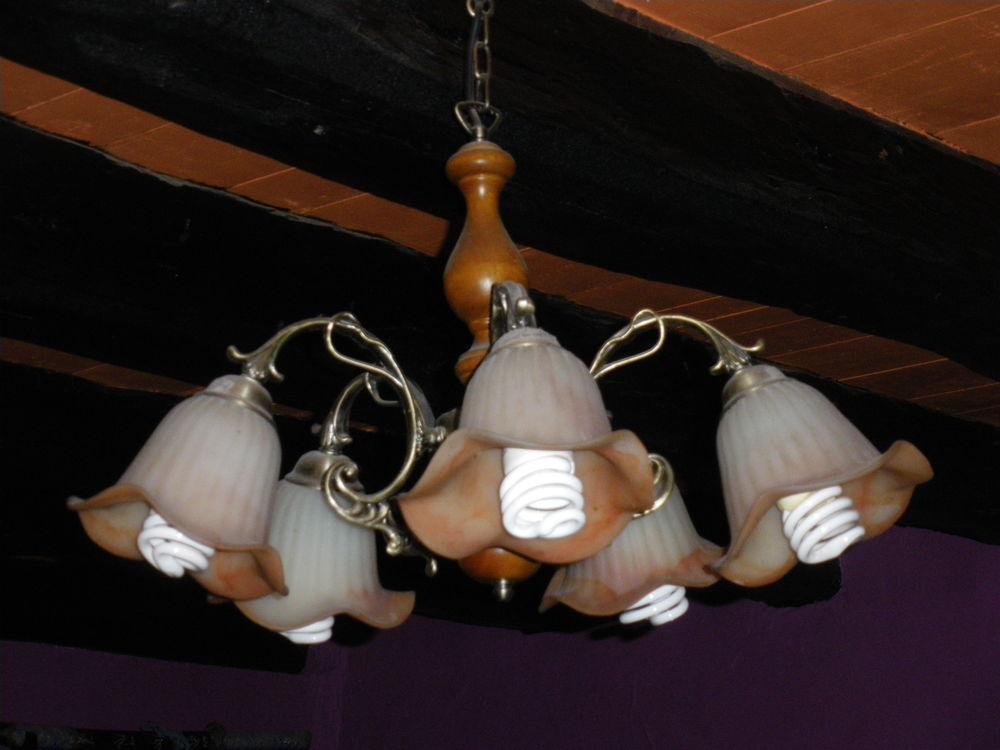 lot de 3 luminaires suspendus avec globes forme florales 29 Calès (46)
