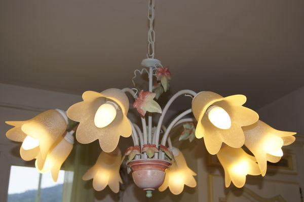 Lustre thème floral + 8 ampoules ECO 60 Bras (83)