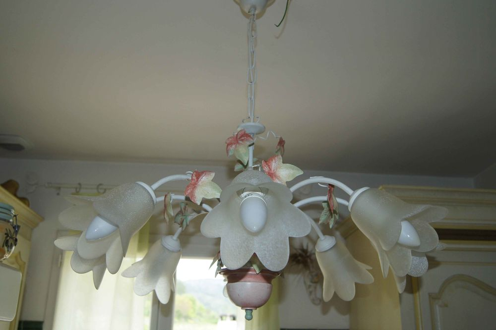 Lustre thème floral + 8 ampoules ECO 30 Bras (83)