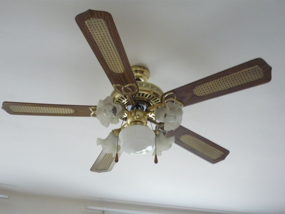 lustre ventilateur 4 pâles et lampes couleur noyer  70 Paris 15 (75)