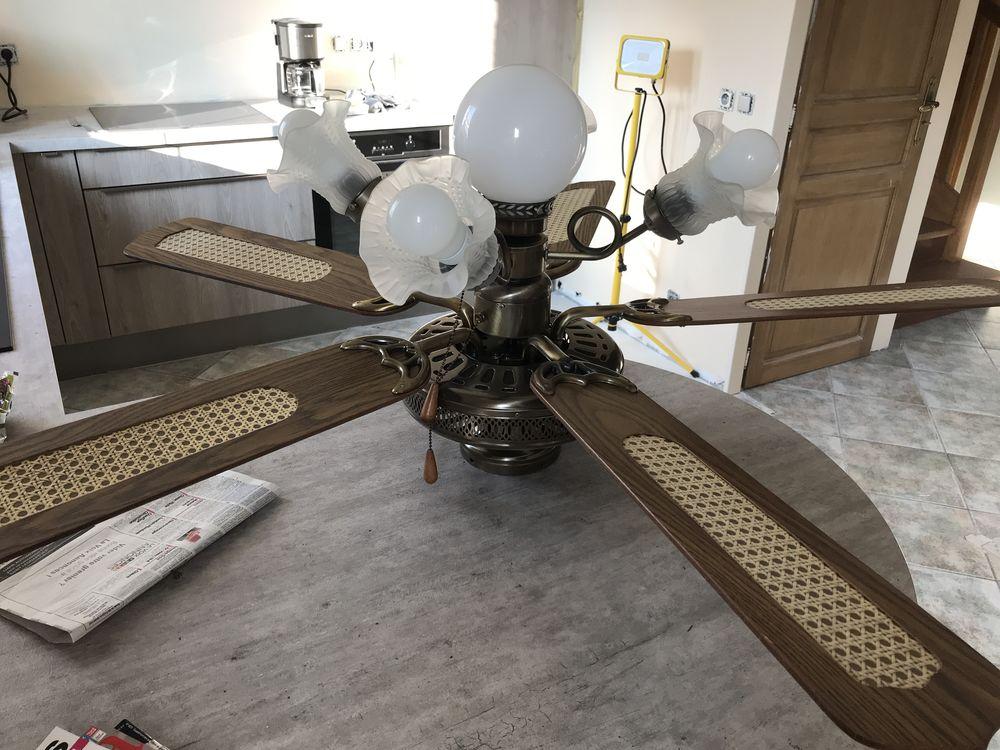 achetez lustre ventilateur occasion annonce vente. Black Bedroom Furniture Sets. Home Design Ideas