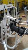 Machines Reconditionnées PRO Life Fitness 750 Pierres (28)
