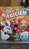 magicien 10 Seyssins (38)