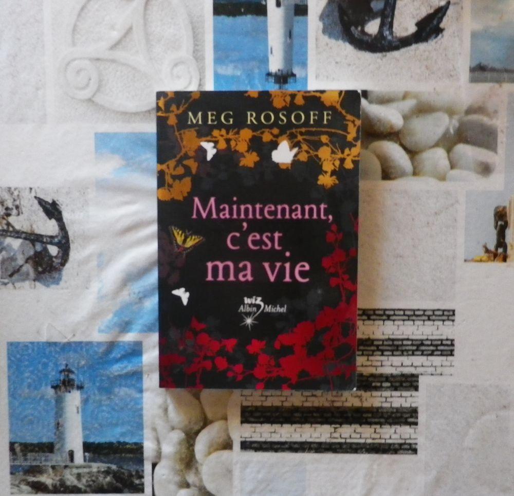MAINTENANT, C'EST MA VIE de Meg ROSOFF Ed. WIZ Albin Michel 4 Bubry (56)
