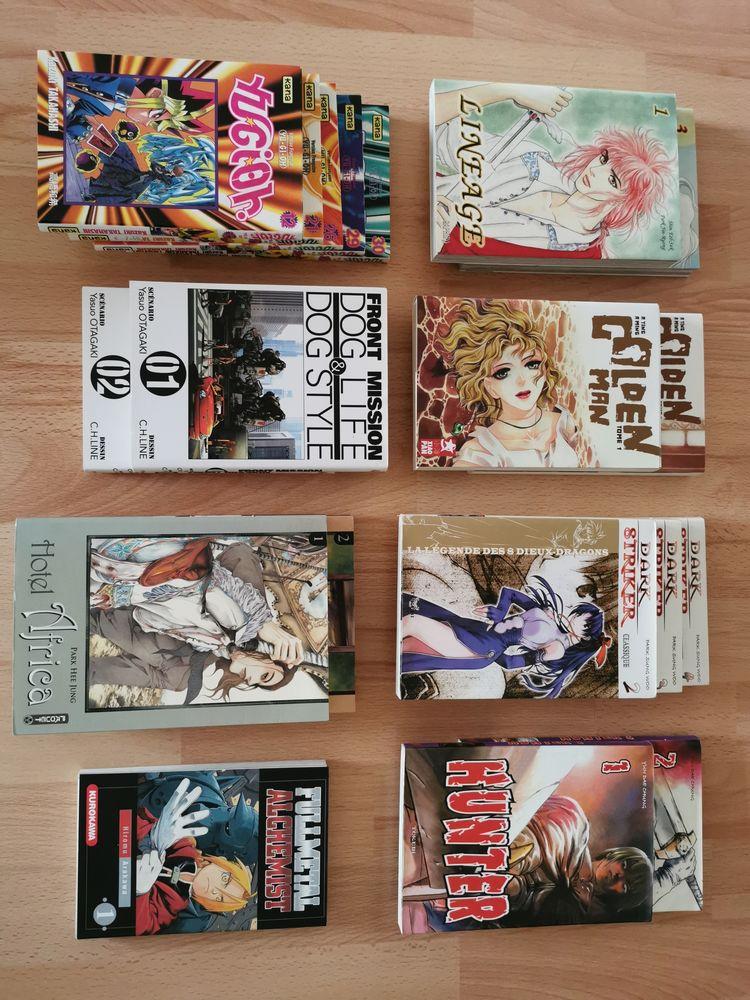 Manga 3 Amiens (80)
