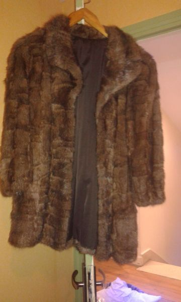 manteau de fourrure 250 Portes-lès-Valence (26)