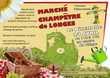 Marché Champêtre Longes (69)