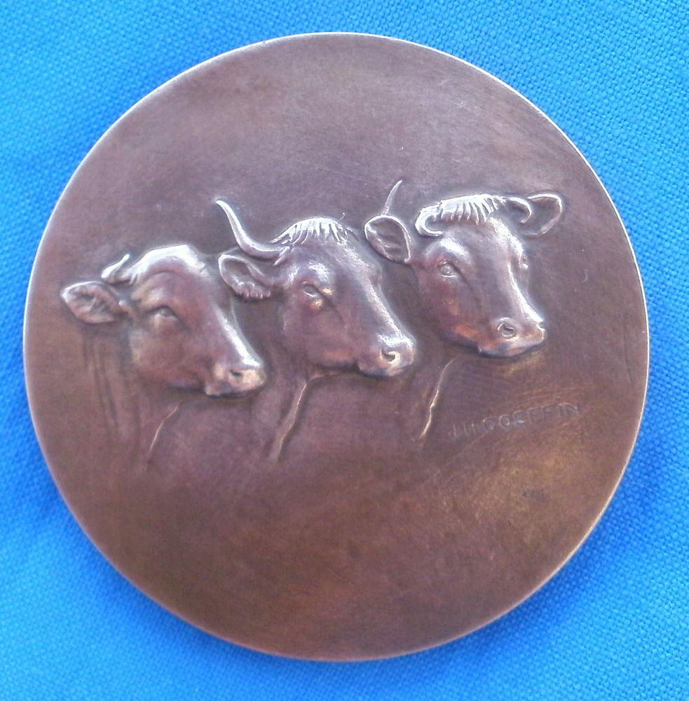 Medaille bronze J H GOEFFIN offert / député Tarn et Garonne 15 Montauban (82)