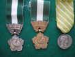 Médailles d'Honneur Départementale et Communale.