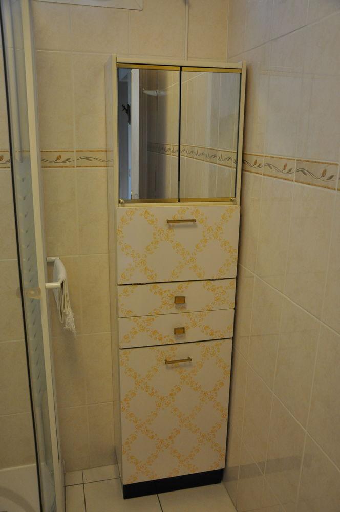 Meuble colonne salle de bain vintage